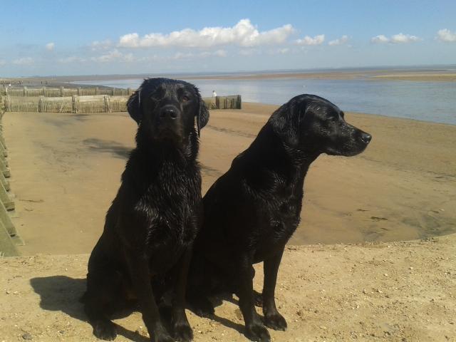 Joni and Bayda at Humberston Beach